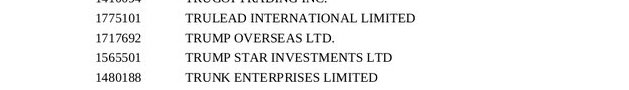 fortune ocean holding limited